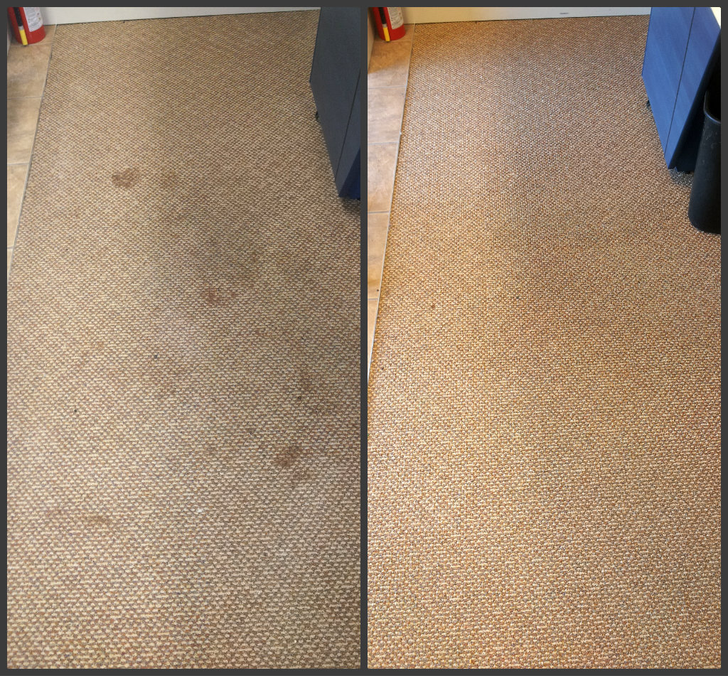 retail office carpet cleaning moncton riverview dieppe new brunswick
